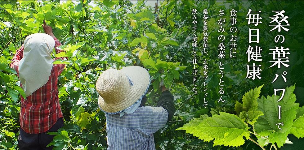 さがみの桑茶「とうとるん」桑茶の通販販売|(株)SMM企画トップ画像